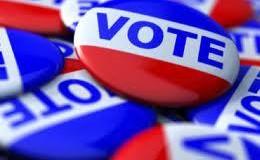 vote-burrons